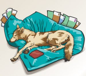 Grafik mit Hund der auf einem mit Geld gefüllten Kopfkissen schläft